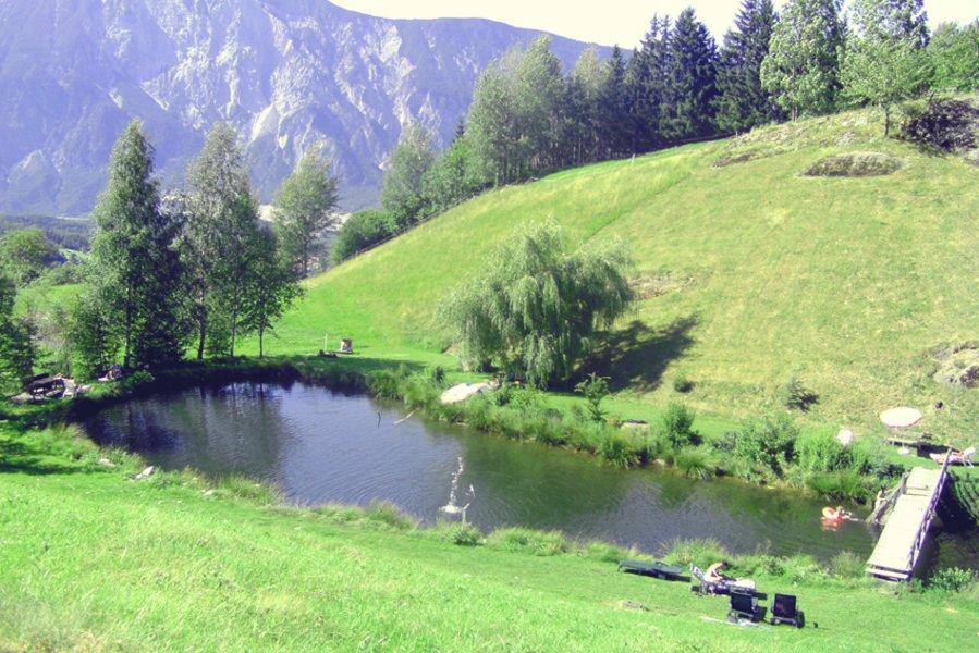 Natural pond pienz ferienwohnungen ferienh user for Small natural pond